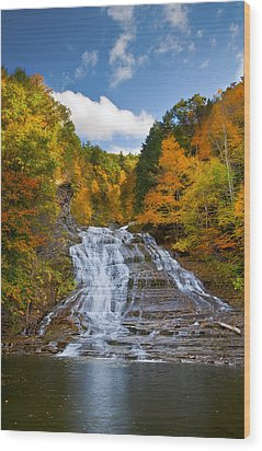 Buttermilk Falls 2 Wood Print by Mark Papke