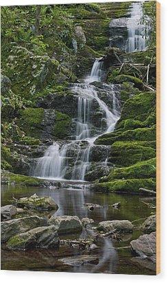 Buttermilk Falls Wood Print by Andrew Kazmierski