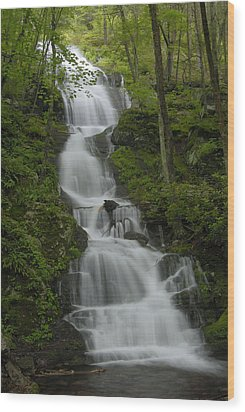 Buttermilk Falls Wood Print by Stephen  Vecchiotti