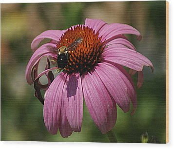 Wood Print featuring the photograph Buzzing by Rick Friedle