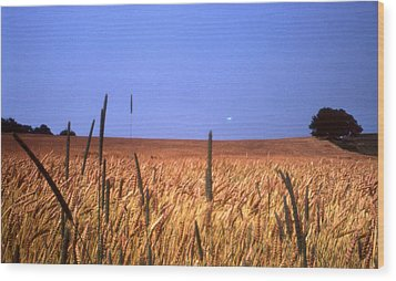 By The Highway 2 Wood Print by Lyle Crump