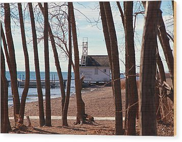 Wood Print featuring the photograph By The Lake by Valentino Visentini