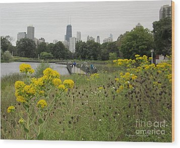By The Lincoln Park Pond Wood Print by Kathie Chicoine