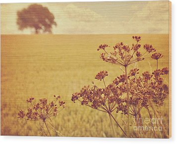 Wood Print featuring the photograph By The Side Of The Wheat Field by Lyn Randle
