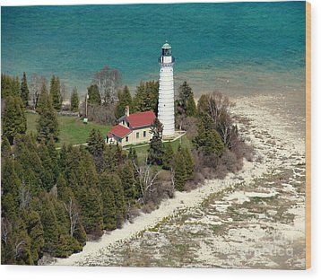 Wood Print featuring the photograph C-018 Cana Island Lighthouse by Bill Lang