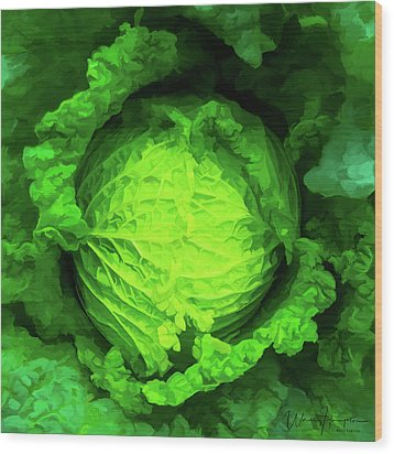 Cabbage 02 Wood Print by Wally Hampton
