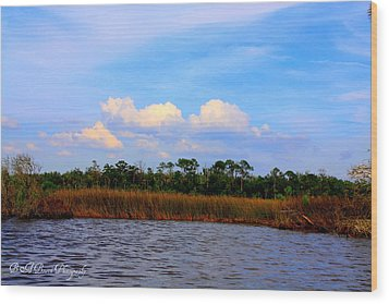 Wood Print featuring the photograph Cabbage Palms And Salt Marsh Grasses Of The Waccasassa Preserve by Barbara Bowen