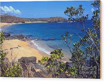 Cabeza Chiquita El Convento Beach Wood Print by Thomas R Fletcher