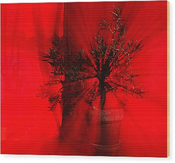 Wood Print featuring the photograph Cabin Fever Dance by Susan Capuano