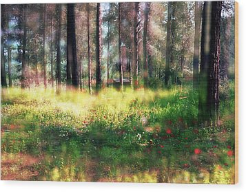 Wood Print featuring the photograph Cabin In The Woods In Menashe Forest by Dubi Roman