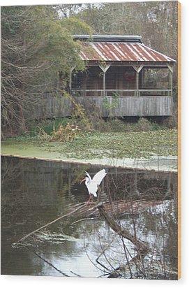 Cabin On The Bayou Wood Print
