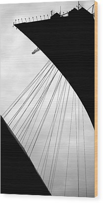 Wood Print featuring the photograph Cables And Funes by Valentino Visentini