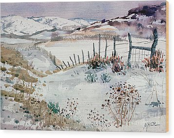 Cache Valley Meadows  Wood Print by Donald Maier