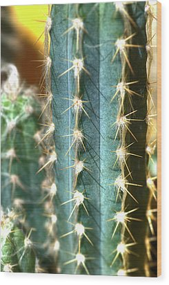 Wood Print featuring the photograph Cactus 3 by Jim and Emily Bush