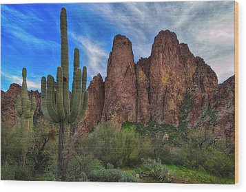 Wood Print featuring the photograph Cactus And Goldfield Mountains by Dave Dilli