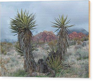 Cactus Frame Wood Print by Rita Tortorelli