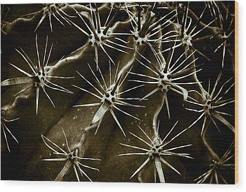 Cactus Wood Print by Frank Tschakert