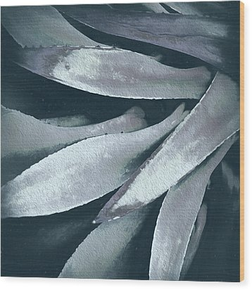 Wood Print featuring the photograph Cactus In Blue And Grey 2 by Julie Palencia