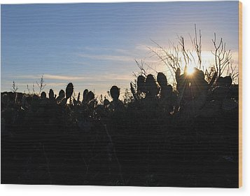 Wood Print featuring the photograph Cactus Silhouettes by Matt Harang