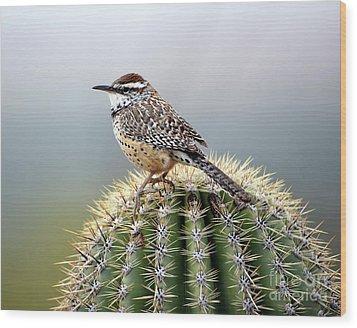 Cactus Wren On Saguaro Wood Print