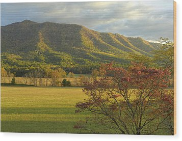 Cades Cove Autumn Sunset In Great Smoky Mountains Wood Print by Darrell Young