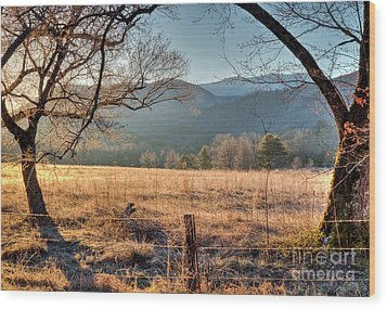Wood Print featuring the photograph Cades Cove, Spring 2017 by Douglas Stucky