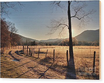 Wood Print featuring the photograph Cades Cove, Spring 2017,i by Douglas Stucky