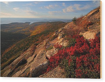 Cadillac Mountain Sunrise At Acadia National Park Wood Print by Jetson Nguyen
