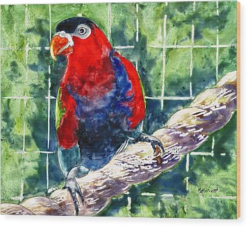 Caged Wood Print by Marsha Elliott