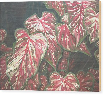 Caladiums Wood Print by Linda Eades Blackburn
