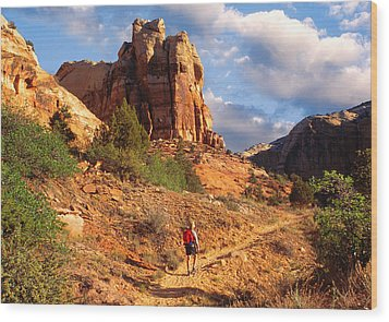 Calf Creek Canyon Escalante Utah Wood Print by Utah Images