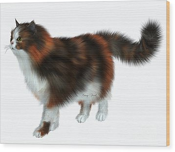 Calico Cat Wood Print by Corey Ford