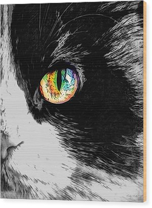 Calico Cat With A Splash Wood Print