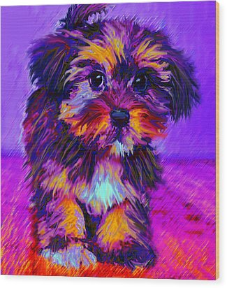 Calico Dog Wood Print