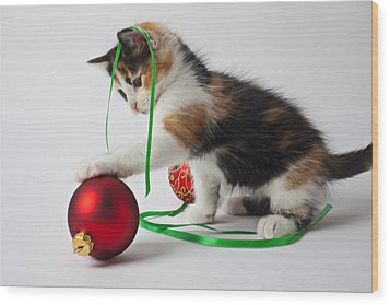 Calico Kitten And Christmas Ornaments Wood Print