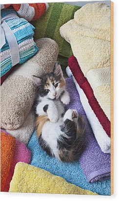 Calico Kitten On Towels Wood Print by Garry Gay