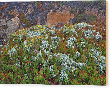 California Coast Wildflowers Wood Print by George Bostian