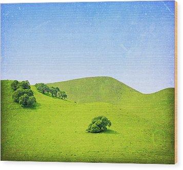 Wood Print featuring the photograph California Hillside by Melanie Alexandra Price
