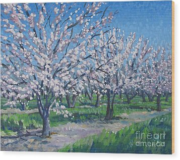 California Orchard Wood Print by Vanessa Hadady BFA MA