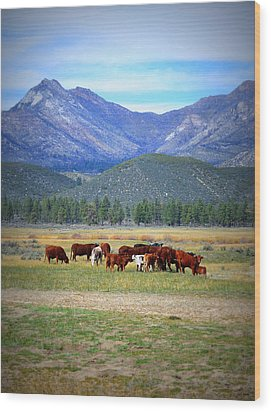 Wood Print featuring the photograph California Pastures by Glenn McCarthy Art and Photography