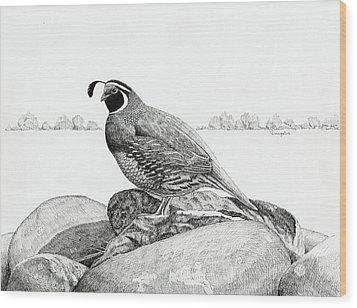 California Valley Quail Wood Print