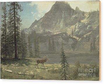 Call Of The Wild Wood Print by Albert Bierstadt
