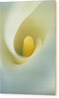 Calla Wood Print by Kathy Yates