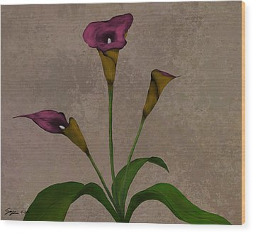 Calla Lilies Wood Print by Steven Powers SMP