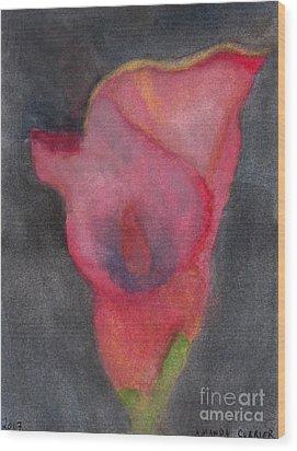 Calla Lily Wood Print by Amanda Currier