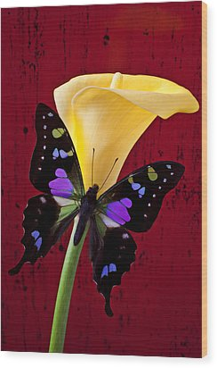 Calla Lily And Purple Black Butterfly Wood Print by Garry Gay