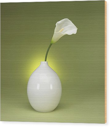 Calla Lily And Vase Wood Print