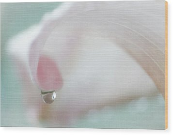 Calla Lily Raindrop Wood Print