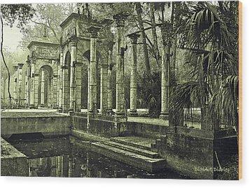 Calle Grande Ruins Wood Print by DigiArt Diaries by Vicky B Fuller