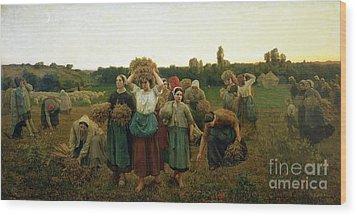 Calling In The Gleaners Wood Print by Jules Breton